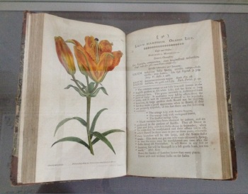 William Curtis (1746–1799) The Botanical Magazine, or Flower-Garden Displayed (London, 1787), all from the National Botanic Gardens.