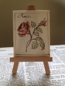 Anne Caulfeild, 2nd Countess of Charlemont (1780–1876) (attrib.) Rose (c. 1805) Facsimile. Details of original: Watercolour, 7.6 x 6 cm