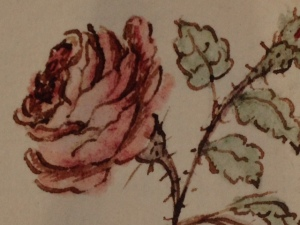 Detail of the miniature Anne Caulfeild, 2nd Countess of Charlemont (1780–1876) (attrib.) Rose (c. 1805)